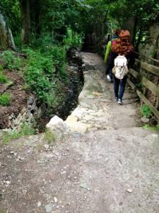 Trail to Merano