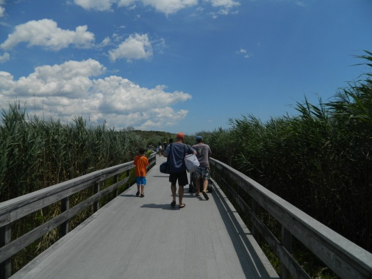 Boardwalk to beach and nature trail