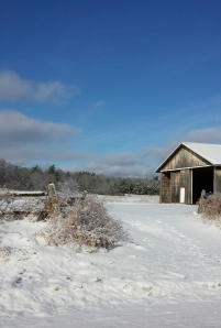 An Adirondack Christmas